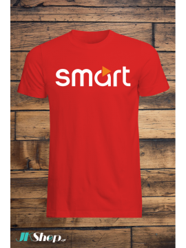 Smart (12)